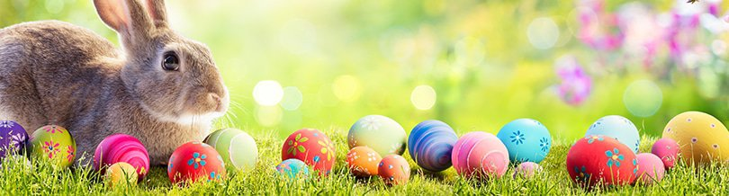 easter free coupons